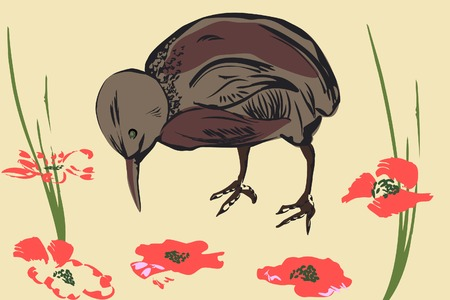 Sparrow and poppy. Vector illustraion. Vector
