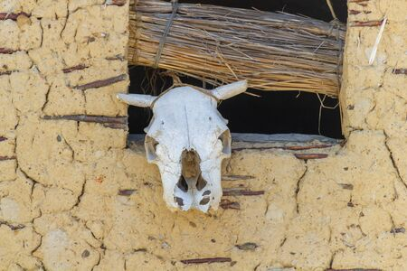 Skull of a cow hanging at one of the houses of the Bay of Bones in Macedonia Banco de Imagens