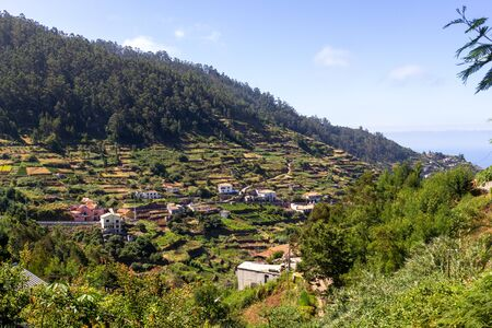 Houses and terraced fields near the forest on hills of Madeira 版權商用圖片