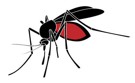 Mosquito silhouette isolated on white background. Vectror illustration EPS10.