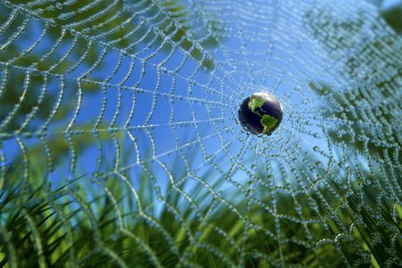 World in Wide Web (WWW concept) or Green Environment Stock Photo