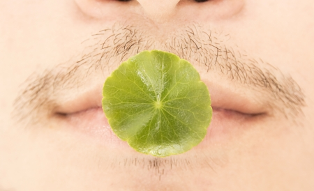 leaf on mouth