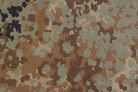 fall camouflage fabric photo