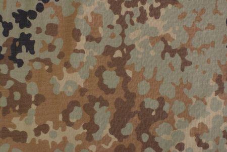 fall camouflage fabric Stock Photo - 9822851