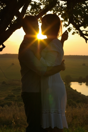 Couple under tree at summer evening photo