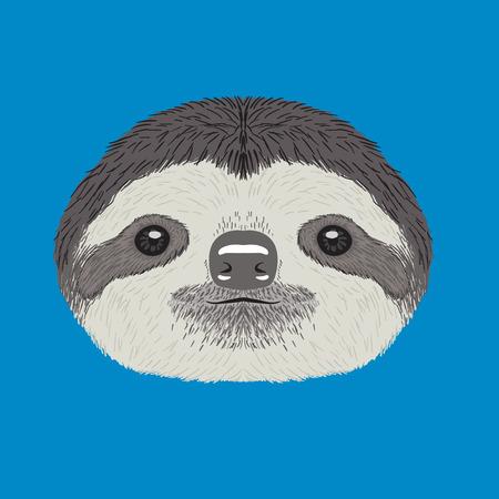 sloth vector illustration