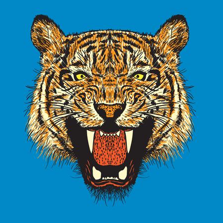 tiger vector illustration Illustration