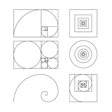 Golden ratio template vector illustration fibonacci Vector Illustration