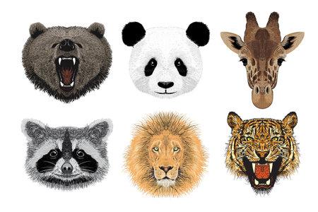 Set of animal portraits, hand drawn illustration