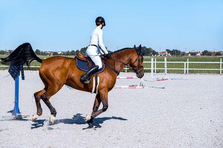 Equitación. Chica joven a caballo. Deporte ecuestre en detalle. Caballo deportivo y jinete al galope. el jinete a caballo