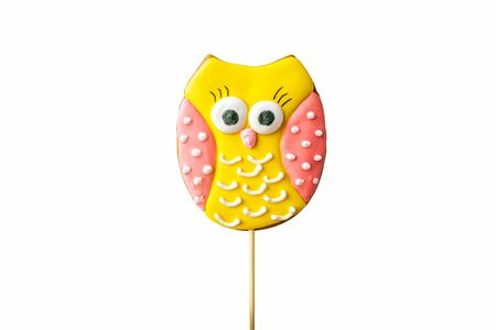 Owl christmas gingerbread isolated on the white background. colorful cookies