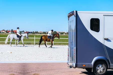 transportation livestock. Horse transportation van, equestrian sport