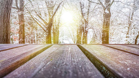 Empty wooden deck table with winter background, trees in the snow