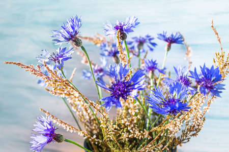 Blue cornflower, close up. bouquet of field flowers as a gift, blue petals scattered