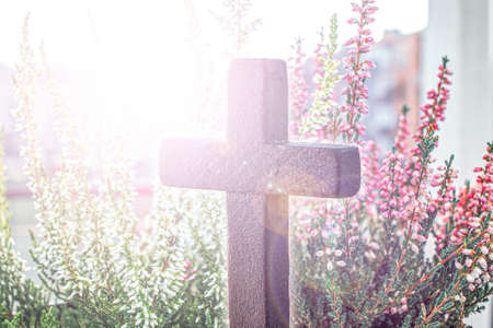 The cross of God in the rays of the sun. Background of religions. Beautiful wooden cross