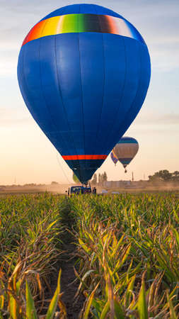 balloon flies into the sky above the countryside