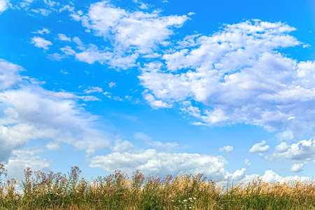 beautiful blue sky in summer day