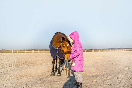 Horse and girl baby. Make friends with an animal
