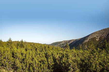mountain landscape sunlight, clear weather