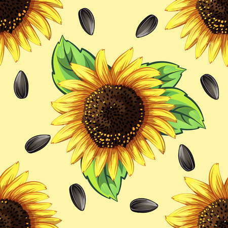 seamless pattern of sunflowers and sunflower seeds Vector