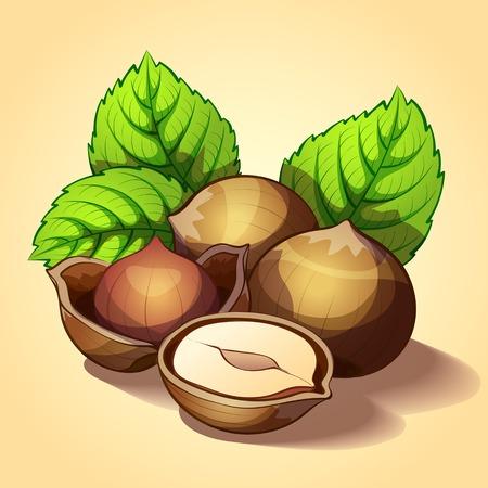 hazelnut: Hazelnut with green leaves Illustration