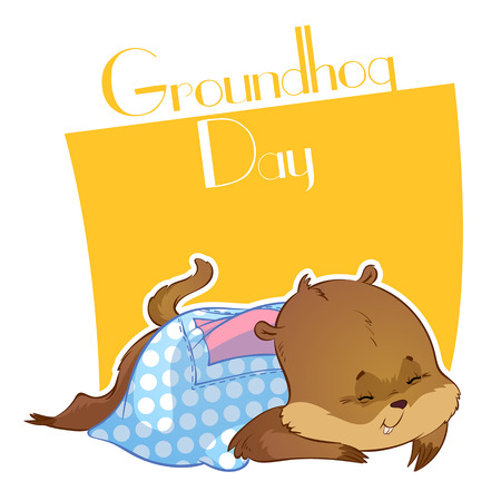 marmot: Cute sleeping marmot