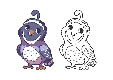 Cute little quail. Cartoon vector character isolated on a white background with black outline.