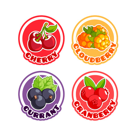 cranberry illustration: Four stickers with different berries. Cherry, cloudberry, currant and cranberry. Vector cartoon illustration isolated on a white background. Illustration
