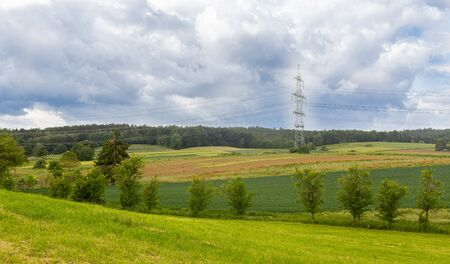Cultivated fields in Germany. Young cereals. Growing grain. Single power pole. Transfer Line. Cloudy sky. Poppies in the field.