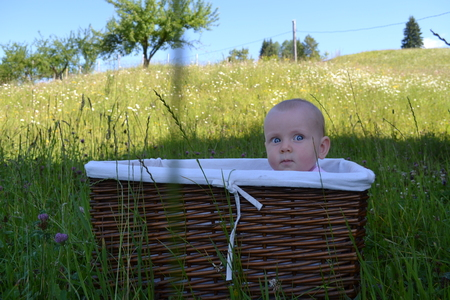 curious kid hides in a wicker basket