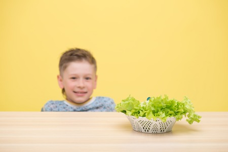 plateful: Selective focus on the plateful of appetizing lettuce. A little smiling fair-haired boy sitting at the table on background Stock Photo