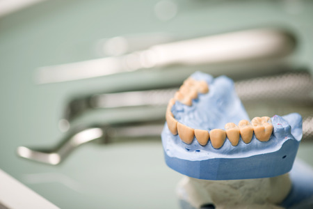 gripper: Selective focus on the false tooth lying near the steel dentist equipment on background Stock Photo