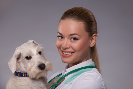 I love animals.  A young female vet holding an adorable little dog while standing against grey background photo