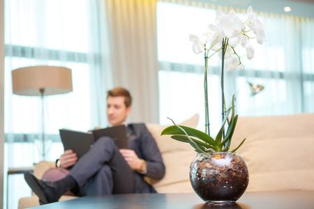 Arbeiten im Hotelzimmer. Tiefenschärfe Bild der selbstbewussten jungen Geschäftsmann in Anzug Lesen von Dokumenten im Sitzen im Hotelzimmer mit einer schönen Blume in den Vordergrund
