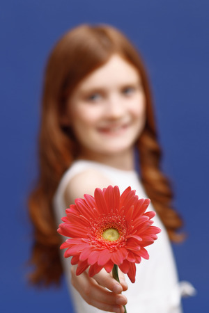 sublime: Sublime beauty. Close up of red flower with nice smiling girl holding it and standing isolated on blue background.
