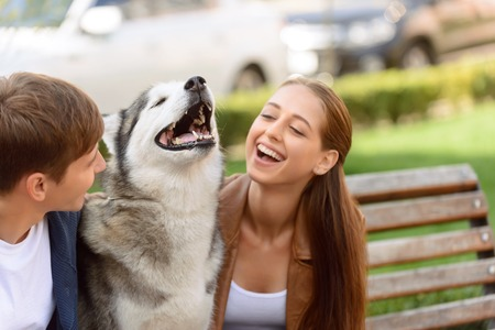 animal beautiful: Our new friend. Overjoyed delighted young couple expressing joy and playing with dog while sitting on the bench