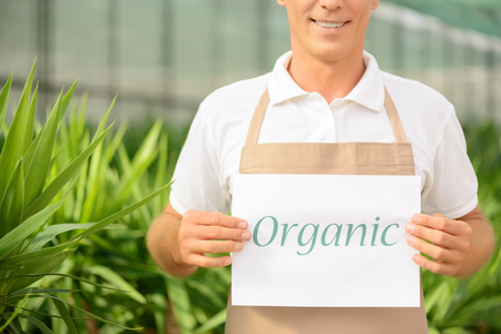 agreeable: Only organic. Agreeable professional florist holding notice while being involved in  work Stock Photo