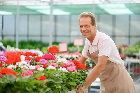 revel: Revel in work. Cheerful positive professional florist leaning on the table while taking care of flowers