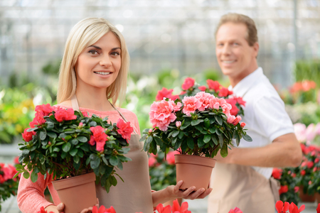revel: Revel in beauty. Positive cheerful attractive florist holding flower pots and smiling with her colleague standing in the background