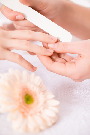 Close up of nail file in hands of professional manicurist holding it and making manicure