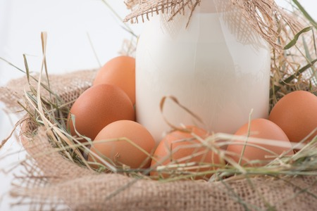 Farm products. Family bottle of milk and chicken eggs in artificial decorative straw nest.