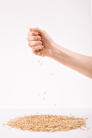 womankind: Bunch of wheat. Female hand overspreading wheat on white surface.