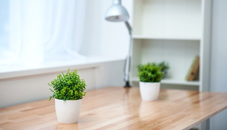 Comfortable place. Nice little flower pots standing on the surface of a wooden table