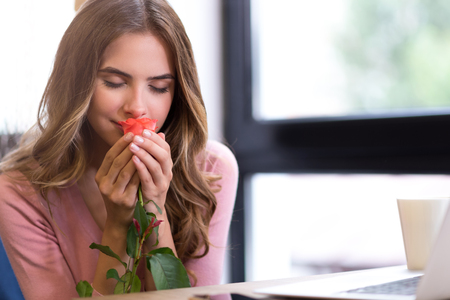 Nice scent. Delighted beautiful young woman sitting at the table and holding rose while smelling it Stockfoto