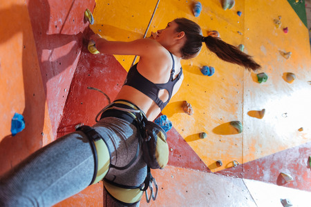 Life with sport. Delighted young active woman training hard in climbing gym while using equipment and climbing up the wall. Stock Photo