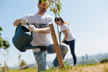 Motivated hardworking man restoring environmental balance