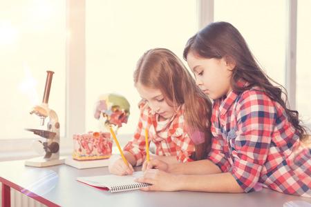 Dvě pečlivé dívky kreslí model lebky Reklamní fotografie
