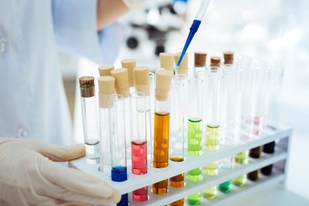 Many test tubes standing on special support Stock Photo