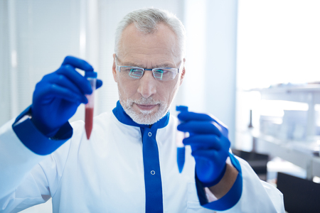 Serious experienced grey-haired bearded scientist holding and looking at test tubes and wearing uniforms and medical gloves and glasses Stock Photo
