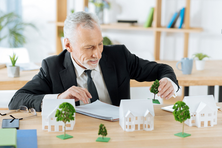 Cute trees. Cheerful creative real estate agent feeling interested while sitting in a comfortable office and putting a model of a tree next to the miniature of a house